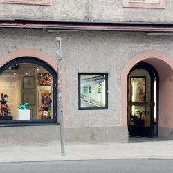 Salzburger Stadthausansicht
