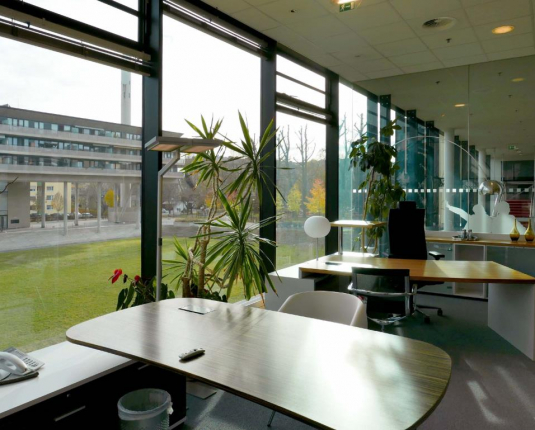 Arbeitsplätze mit großen Fenstern