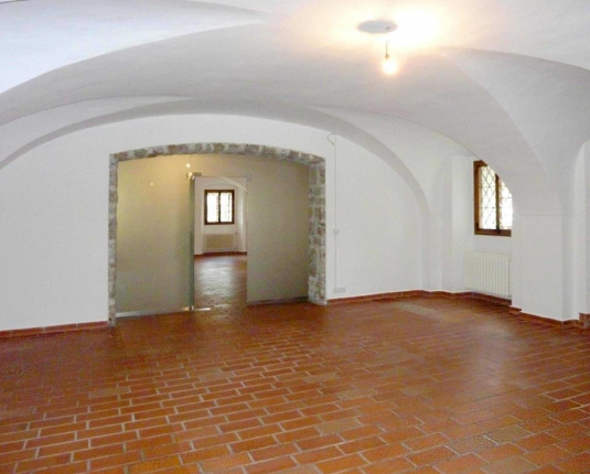 Großzügiger Raum mit Gewölbedecke