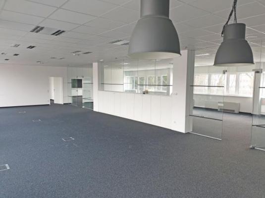 Großzügiger Büroraum mit Teppichboden